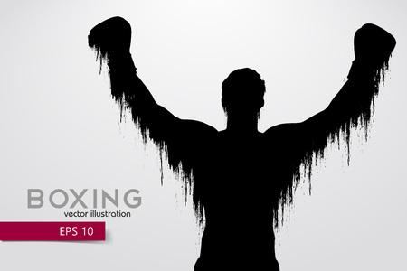 Boxing silhouette. Boxing. Vector illustration Stockfoto