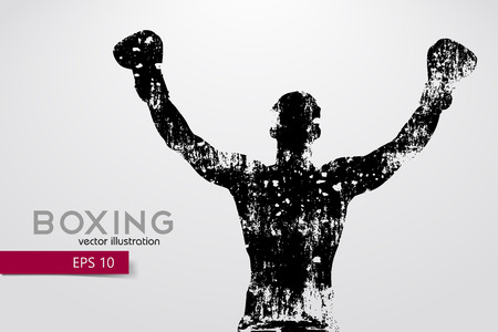 Boxing silhouette. Boxing. Vector illustration Standard-Bild