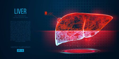 Abstract silhouette of the polygonal organ of liver on blue background. Scanning, research and diagnosis of the human liver. Holographic low poly, wireframe vector. Thanks for watching
