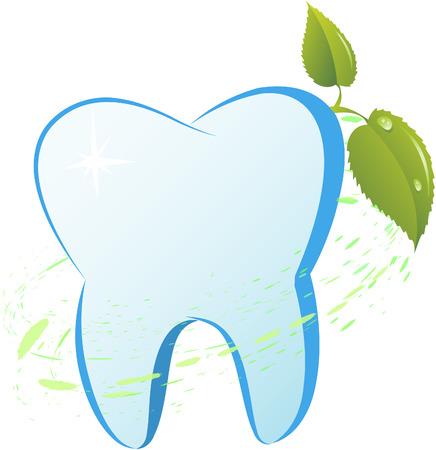 diente caricatura: Diente con una rama de menta