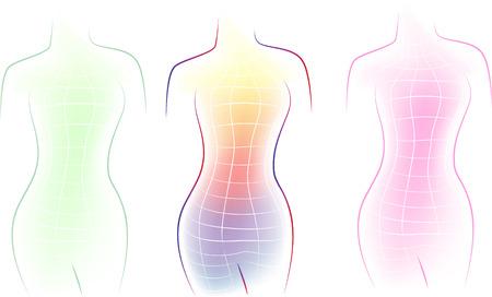 unrecognizable person: Contour of a female body