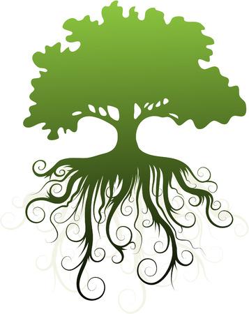 plant with roots: Silueta de un �rbol con ra�ces abstractas.  Vectores