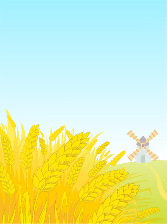 Landscape with a field of a rye and a windmill. Vector