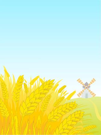 centeno: Paisaje con un campo de un centeno y un molino de viento.  Vectores