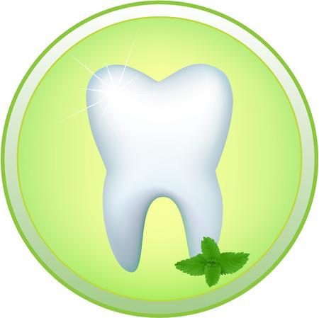 Icono de redondo con la imagen de un diente humano y una rama de menta