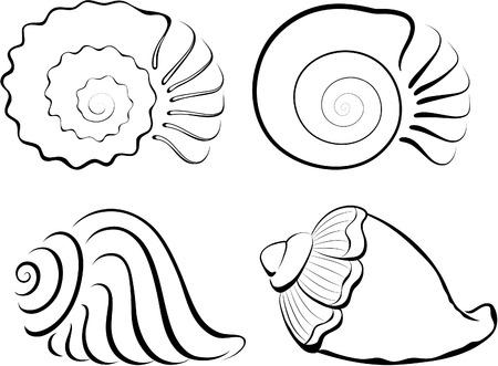 Schelpen  Vector Illustratie