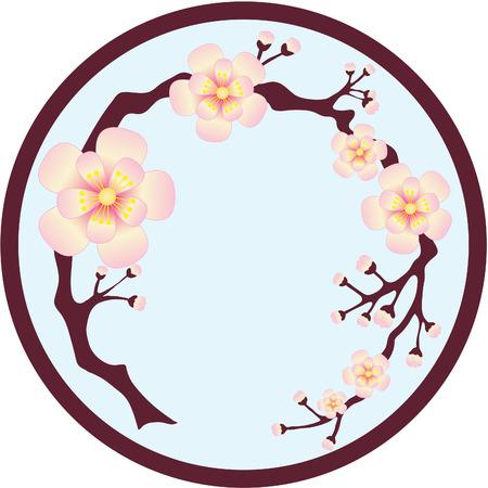 Sakura blossoms on tree