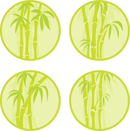 Set of round icons with the bamboo. Vector