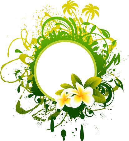 frangipani flower: Tropical  Banner Illustration