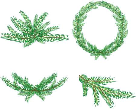 furtree: Fur-tree branches. Element for design illustration.