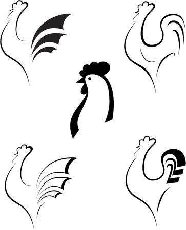gallo: Pollo y Gallo  Vectores