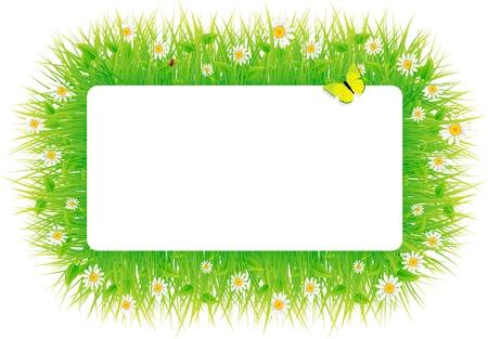 Summer meadow beautiful. Stock Vector - 9572125