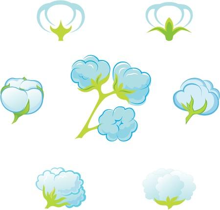 cotton wool: Cotton. Illustration