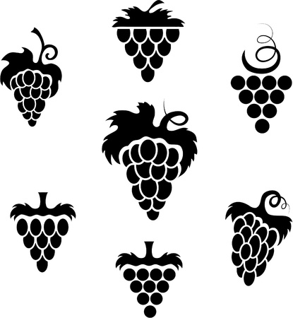 engraved image: Grapes