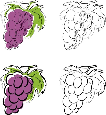 Grapes Stock Vector - 13361162