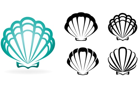 sea shells on beach: Shell collection - vector silhouette illustration