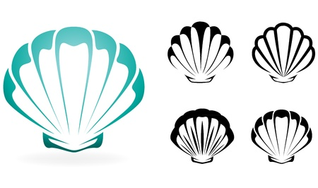 scallop shell: Shell collection - vector silhouette illustration
