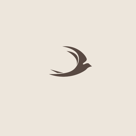 swallow: Swallow bird abstract vector logo design template.