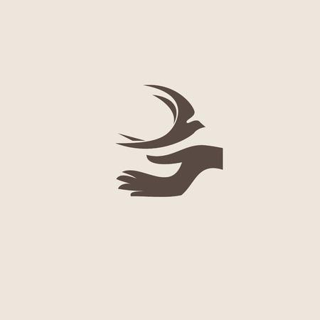 bird logo: Swallow bird abstract vector logo design template.