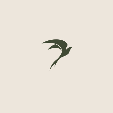 swallow bird: Swallow bird abstract vector logo design template.