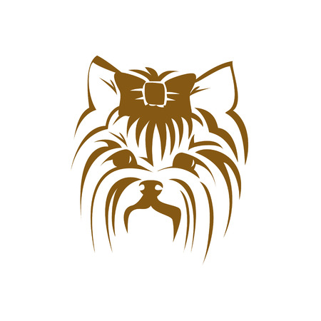 yorkshire: Vector dog Yorkshire terrier icon. Cute Dog