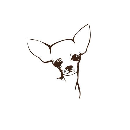 chihuahua: The head of chihuahua dog. Dog vector illustration. Illustration