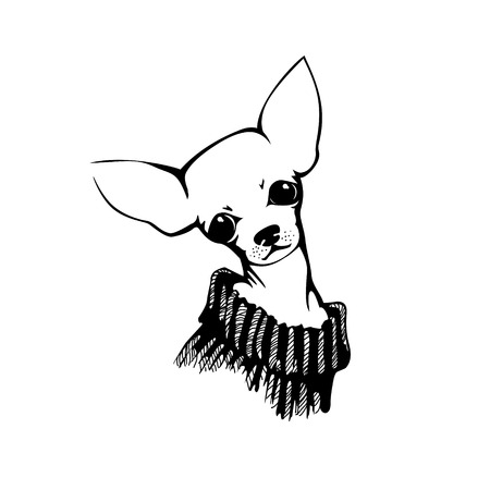 The head of chihuahua dog. Dog vector illustration. Çizim