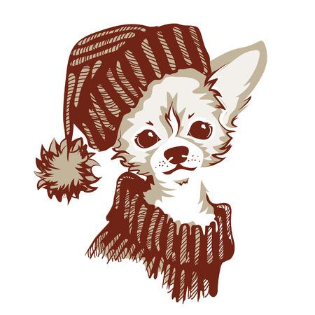 The head of chihuahua dog. Dog vector illustration. Illustration