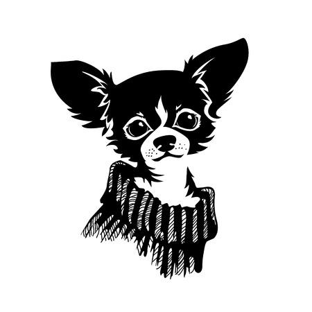 Het hoofd van de chihuahua hond. Hond vector illustratie.
