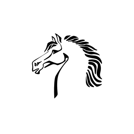 white horse: Vector image of an horse on white background