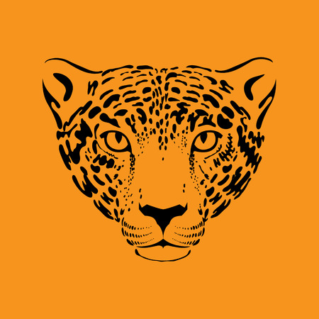 leopard head: Leopard or jaguar. Stylized wild cat. Vector illustration