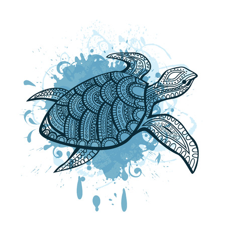 sea shells: Stylized turtle. Hand Drawn doodle vector illustration.