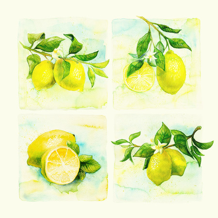 illustration and painting: Hand drawn watercolor painting. illustration of fruit lemon Stock Photo