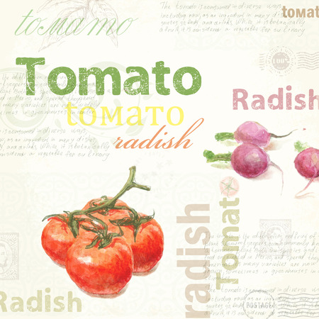 kitchen poster: Kitchen art. Watercolor Tomato poster illustration  for your design.