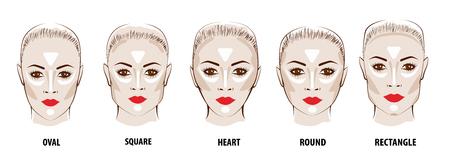 Contour and Highlight makeup. Illustration