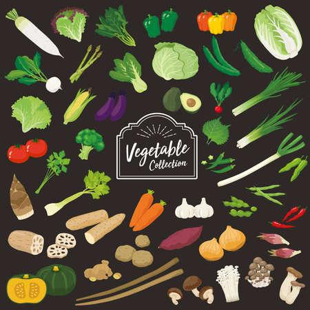 Illustration set of fresh vegetables