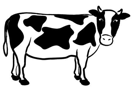 Hand-drawn cow illustration (Holstein)Brush writing