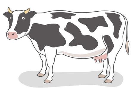 Hand-drawn Dairy cow illustration (Holstein)