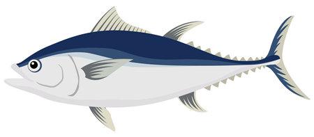 Illustration of fish (tuna) seafood