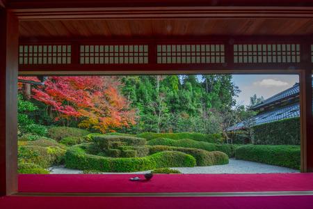 japanese tea garden: Japanese garden