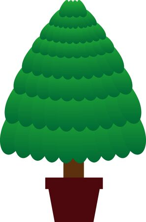 Illustration of fir tree before decoration