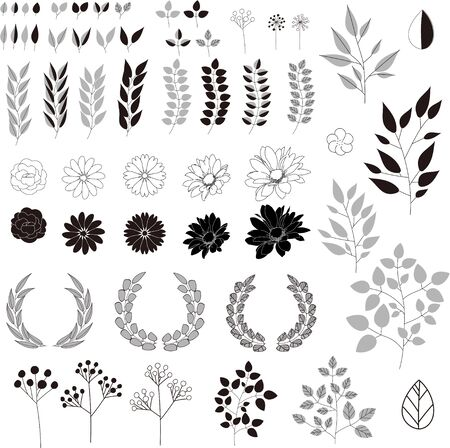Hand drawn plant illustration set