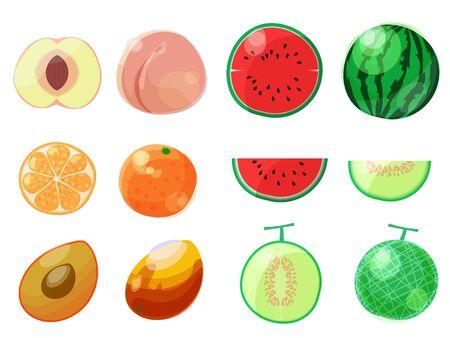Conjunto de ilustración de sección transversal de frutas Ilustración de vector