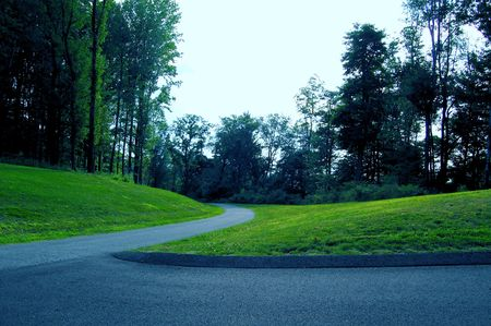 Windy path in park