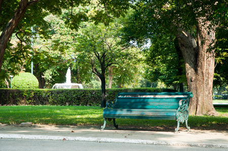 Green vintage chair with big tree in sylvan garden.