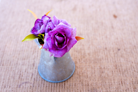 Purple roses in zinc vase