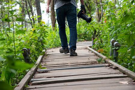walking path: A man walking on walkway path to meadow in forest