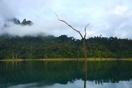 Landscape view of mountain, mist, lake and dry tree, cloudy sky at Khao Sok national park in Surathani, Thailand. Stock Photo