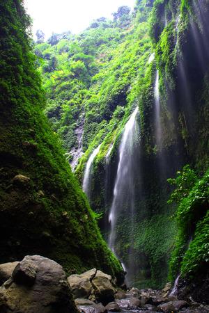 Madakaripura Waterfall is the tallest waterfall in Java and the second tallest waterfall in Indonesia.