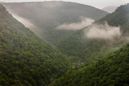 pine creek: The Pennsylvania Grand Canyon in early morning fog  Stock Photo